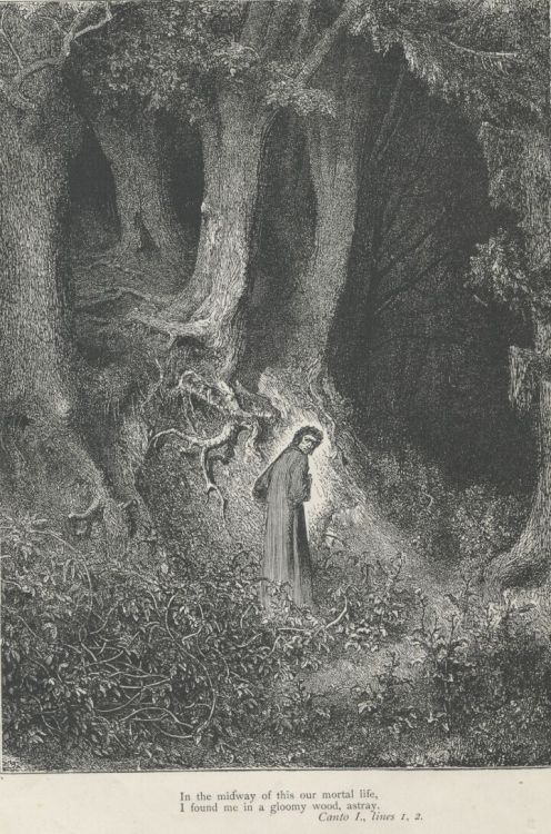 i came to myself within a dark wood where the straight way was lost meaning