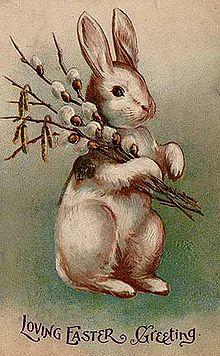 Bunny Postcard 1907
