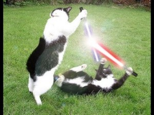 Cats with Lightsaber