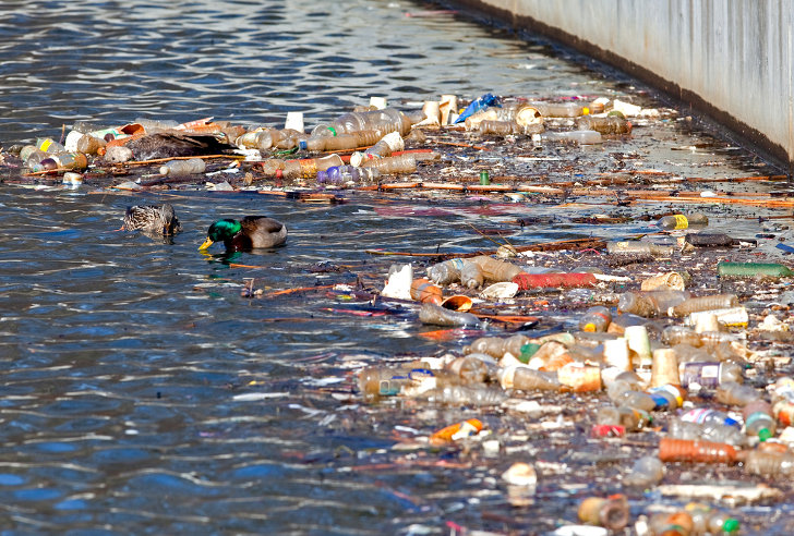 Scientists Discover a Great Garbage Patch in Lake Erie